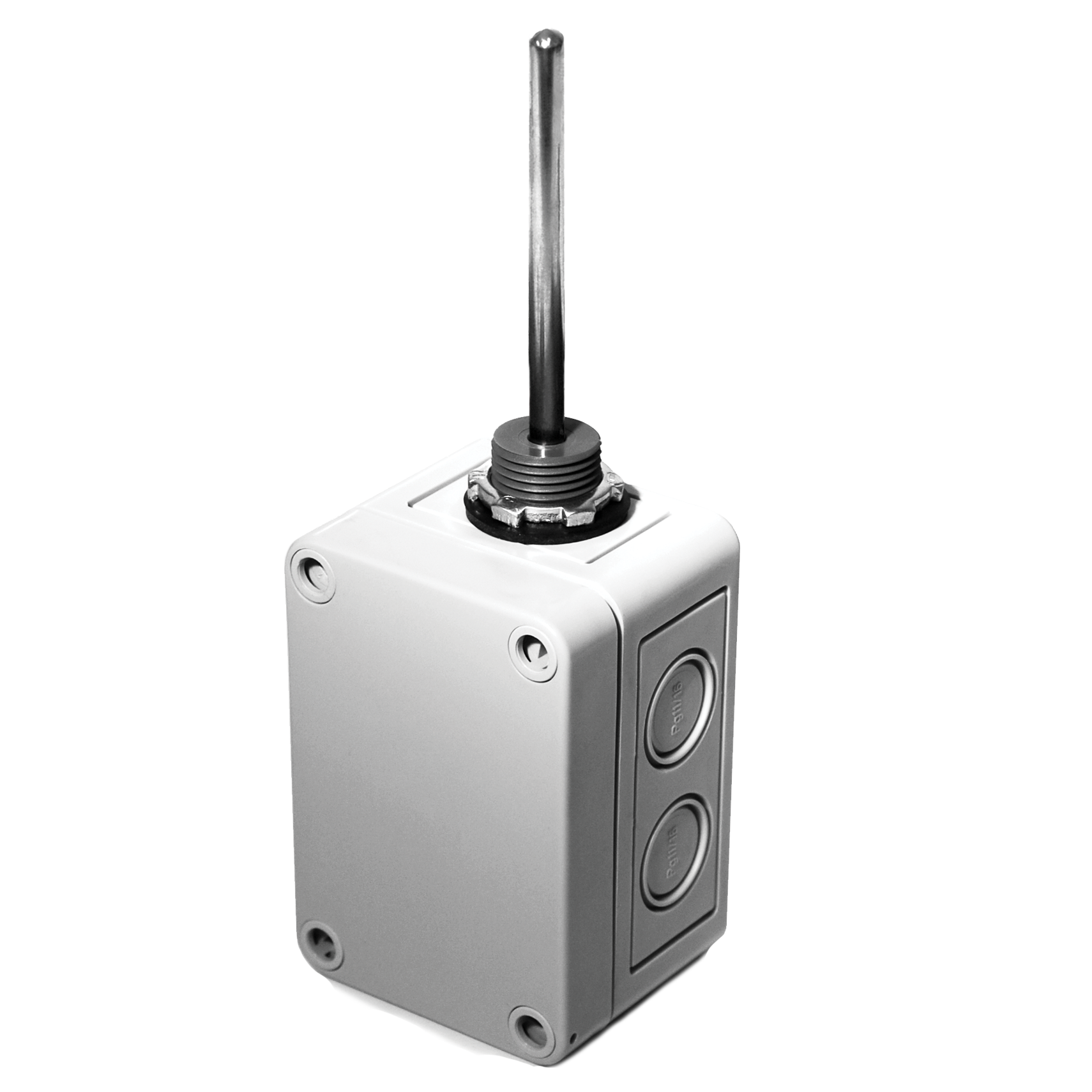 """ACI A/1K-3W-INW-2.5""""-4X Platinum RTD, General Mounting, Immersion No Well, 2.5"""""""
